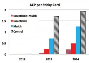Figure 3. Average number of ACP per yellow sticky card by treatment and year.