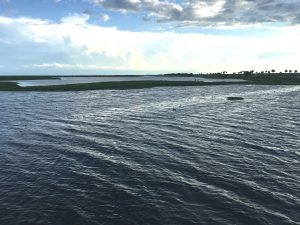 Lake Okeechobee's northern side near the town of Okeechobee, FL. Photo credit: FL Farm Bureau