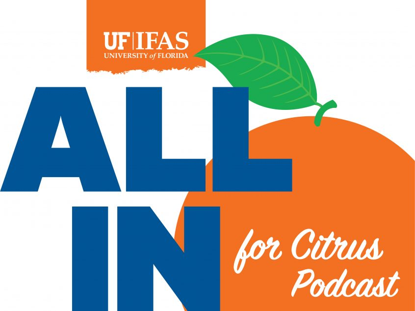 all in for citrus podcast