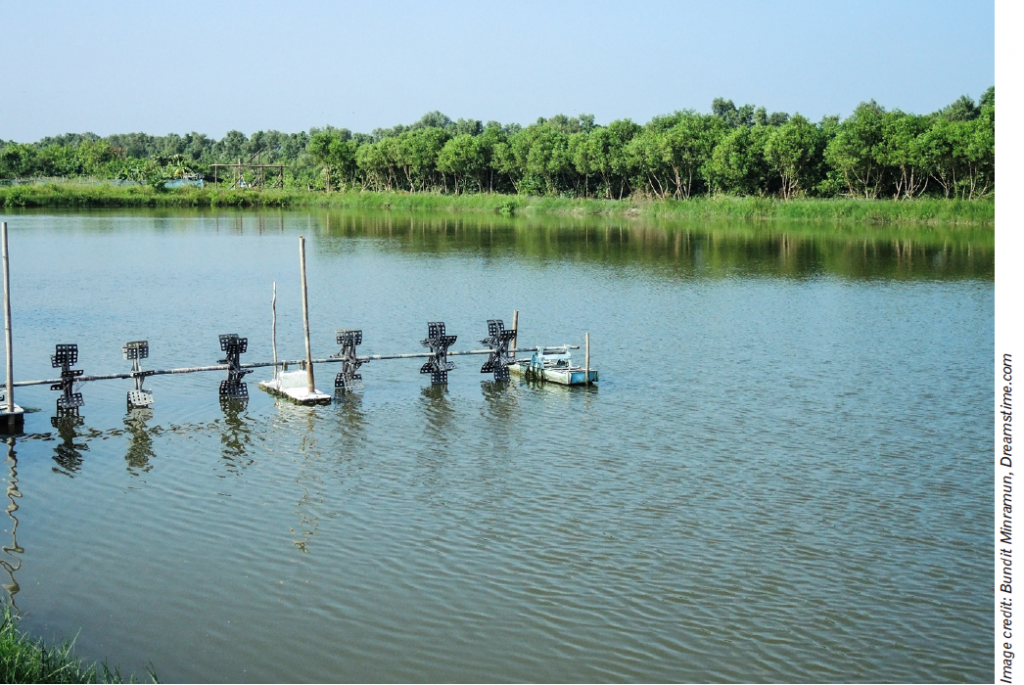 Pesticide applicators must take measures to protect surface water systems.